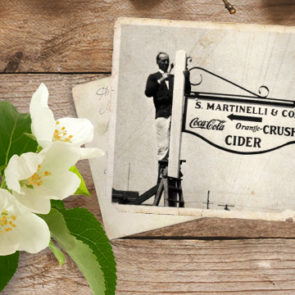In 1865, Stephen started to experiment with bottled fermented hard cider.