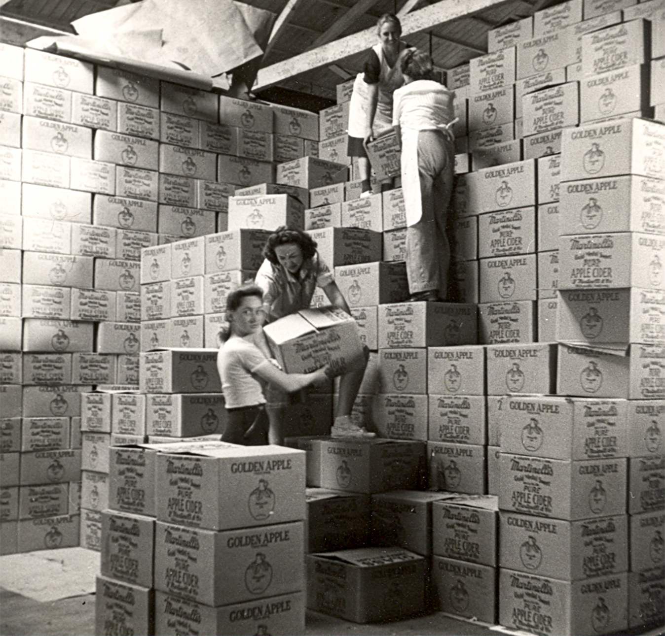 Hazel working in warehouse