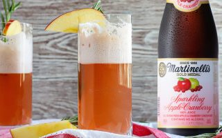 Apple Cranberry Gin Fizz